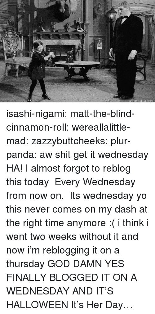 Its Wednesday: isashi-nigami:  matt-the-blind-cinnamon-roll:  wereallalittle-mad:  zazzybuttcheeks:  plur-panda:      aw shit get it wednesday  HA! I almost forgot to reblog this today  Every Wednesday from now on.  Its wednesday yo   this never comes on my dash at the right time anymore :( i think i went two weeks without it and now i'm reblogging it on a thursday  GOD DAMN YES FINALLY BLOGGED IT ON A WEDNESDAY  AND IT'S HALLOWEEN   It's Her Day…