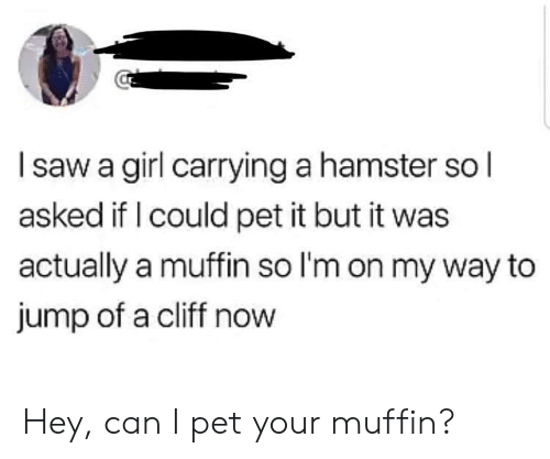 Hamster: Isaw a girl carrying a hamster so l  asked if I could pet it but it was  actually a muffin so I'm on my way to  jump of a cliff now Hey, can I pet your muffin?