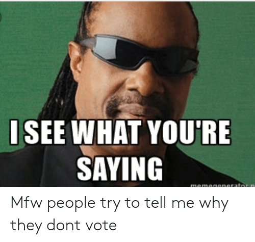 Dont Vote: ISEE WHAT YOU'RE  SAYING Mfw people try to tell me why they dont vote