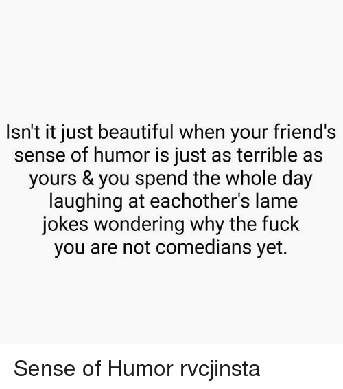 lame jokes: Isn't it just beautiful when your friend's  sense of humor is just as terrible as  yours & you spend the whole day  laughing at eachother's lame  jokes wondering why the fuck  you are not comedians yet. Sense of Humor rvcjinsta