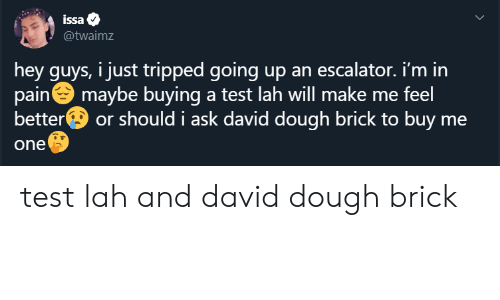 Twaimz: issa  @twaimz  hey guys, i just tripped going up an escalator. i'm in  pain maybe buying a test lah will make me feel  better  or should i ask david dough brick to buy me  one test lah and david dough brick