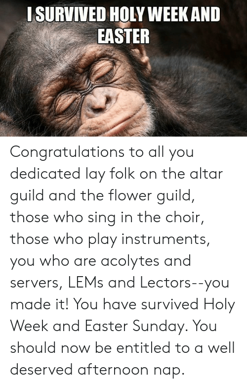 Easter, Congratulations, and Flower: ISURVIVED HOLY WEEK AND  EASTER Congratulations to all you dedicated lay folk on the altar guild and the flower guild, those who sing in the choir, those who play instruments, you who are acolytes and servers, LEMs and Lectors--you made it!  You have survived Holy Week and Easter Sunday.  You should now be entitled to a well deserved afternoon nap.