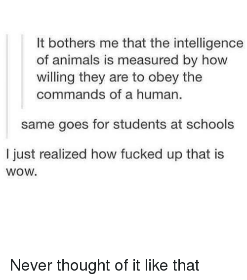 obey: It bothers me that the intelligence  of animals is measured by how  willing they are to obey the  commands of a human  same goes for students at schools  I just realized how fucked up that is  wow. Never thought of it like that