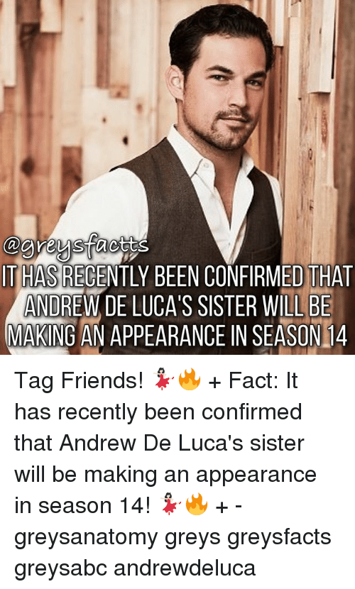 Friends, Memes, and Been: IT HAS RECENTLY BEEN CONFIRMED THAT  ANDREW DE LUCA'S SISTER WILL BE  MAKING AN APPEARANCE IN SEASON 14 Tag Friends! 💃🏻🔥 + Fact: It has recently been confirmed that Andrew De Luca's sister will be making an appearance in season 14! 💃🏻🔥 + - greysanatomy greys greysfacts greysabc andrewdeluca