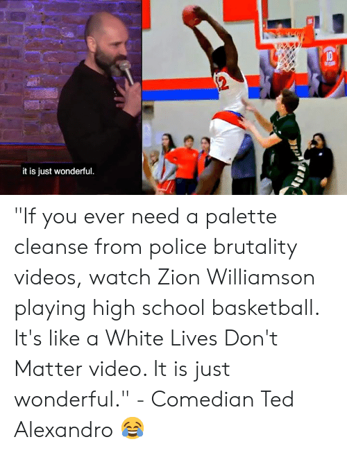 "police brutality: it is just wonderful ""If you ever need a palette cleanse from police brutality videos, watch Zion Williamson playing high school basketball. It's like a White Lives Don't Matter video. It is just wonderful.""   - Comedian Ted Alexandro 😂"