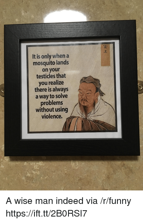 Wise Man: It is only when a  mosquito lands  on your  testicles that  you realize  there is always  a way to solve  problems  without using  violence. A wise man indeed via /r/funny https://ift.tt/2B0RSI7