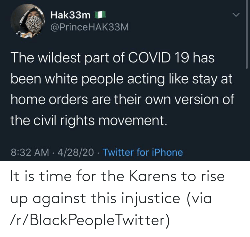 rise up: It is time for the Karens to rise up against this injustice (via /r/BlackPeopleTwitter)