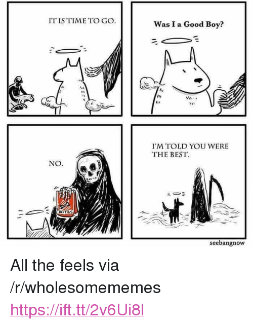 """All The Feels: IT IS TIME TO GO  Was I a Good Boy?  I'M TOLD YOU WERE  THE BEST  NO.  ミー·  BITES  seebangnow <p>All the feels via /r/wholesomememes <a href=""""https://ift.tt/2v6Ui8l"""">https://ift.tt/2v6Ui8l</a></p>"""