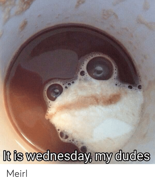 My Dudes: It is wednesday, my dudes Meirl
