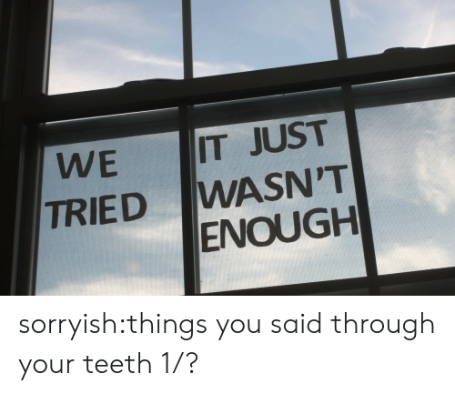 We Tried: IT JUST  WASN'T  ENOUGH  WE  TRIED sorryish:things you said through your teeth 1/?