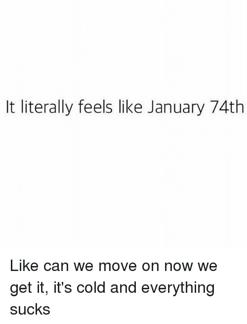 Girl Memes, Cold, and Can: It literally feels like January 74th Like can we move on now we get it, it's cold and everything sucks