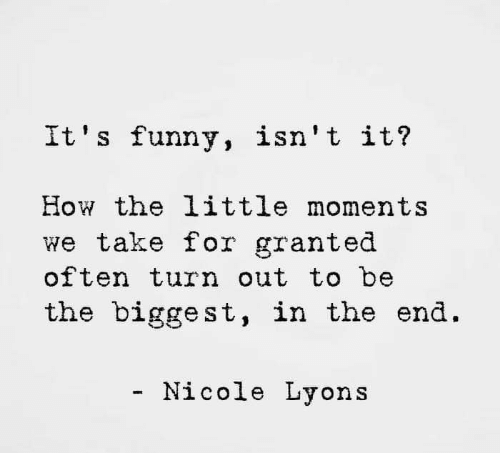 take for granted: It' s funny, isn't it?  How the little moments  we take for granted  often turn out to be  the biggest, in the end.  - Nicole Lyons