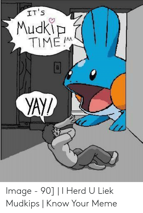 Liek Mudkips: IT S  TIME I  yAY/ Image - 90] | I Herd U Liek Mudkips | Know Your Meme
