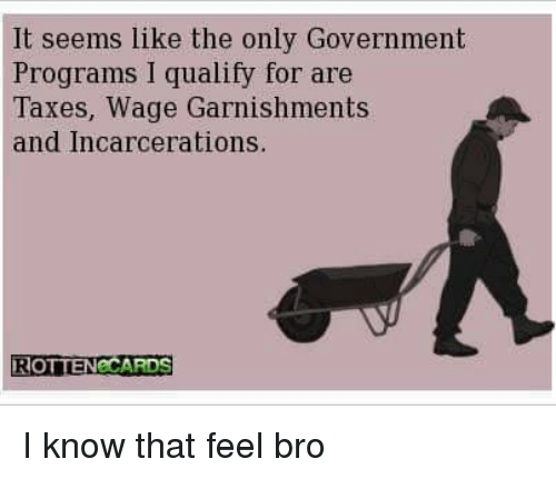 Feels Bro: It seems like the only Government  Programs qualily for are  Taxes, Wage Garnishments  and Incarcerations.  ROTTENeCARDS I know that feel bro