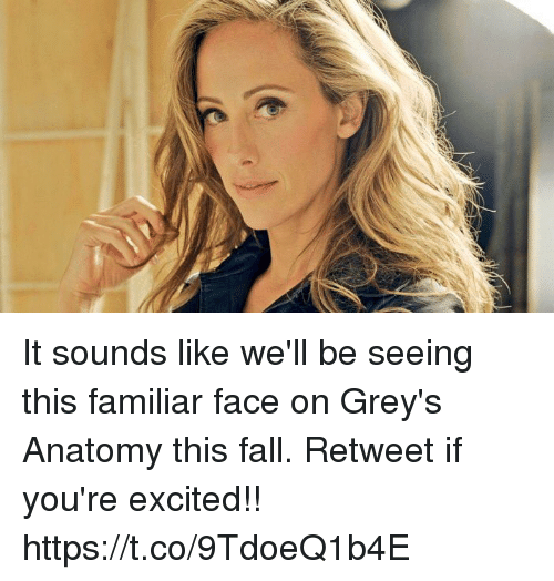 Fall, Memes, and Grey's Anatomy: It sounds like we'll be seeing this familiar face on Grey's Anatomy this fall. Retweet if you're excited!! https://t.co/9TdoeQ1b4E