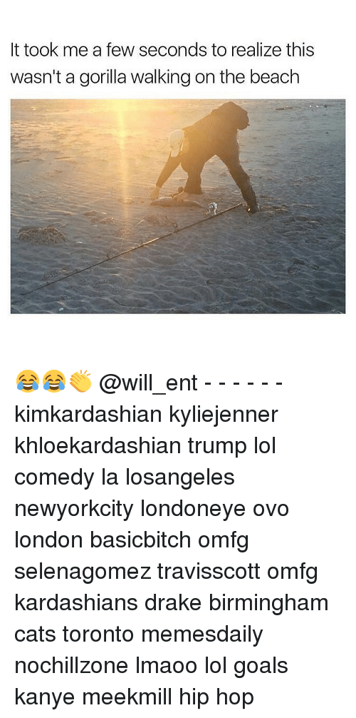 Cats, Drake, and Goals: It took me a few seconds to realize this  wasn't a gorilla walking on the beach 😂😂👏 @will_ent - - - - - - kimkardashian kyliejenner khloekardashian trump lol comedy la losangeles newyorkcity londoneye ovo london basicbitch omfg selenagomez travisscott omfg kardashians drake birmingham cats toronto memesdaily nochillzone lmaoo lol goals kanye meekmill hip hop