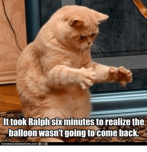 memes: It took Ralphsix minutesto realize the  balloon wasn't going tocome back