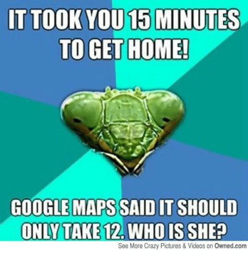 how to get google maps to talk to you