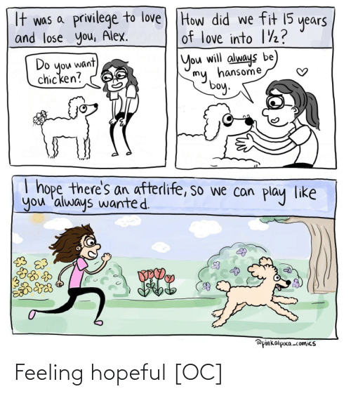 privilege: It was a privilege to love) THow did we fit 15  and lose you, Alex.  years  of love into 1½?  Do  you want  chicken?  You will always be  my, hansome  boy.  I hope there's an afterlife, so we can  you 'always wanted.  play  like  @pinkalpaca -comics Feeling hopeful [OC]