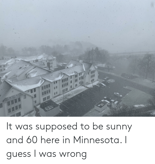 sunny: It was supposed to be sunny and 60 here in Minnesota. I guess I was wrong