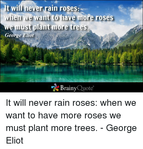 george eliot: It wil never rain roses:  when we want to have more roses  e must plant more trees.  George Eliot  Brainy  Quote It will never rain roses: when we want to have more roses we must plant more trees. - George Eliot