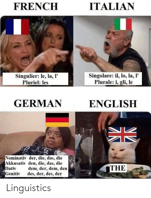 English, French, and German: ITALIAN  FRENCH  Singolare: il, lo, la, l'  Plurale: i, gli, le  Singulier: le, la, l'  Pluriel: les  GERMAN  ENGLISH  Nominativ der, die, das, die  Akkusativ den, die, das, die  Dativ  Genitiv  dem, der, dem, den  des, der, des, der  THE Linguistics
