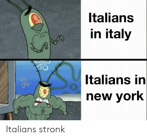 italians: Italians  in italy  Italians in  new york Italians stronk