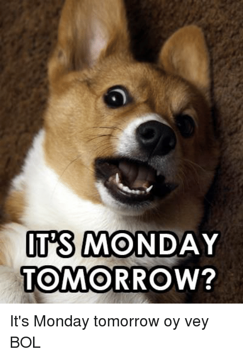 Memes, Tomorrow, and Monday: ITIS MONDAY  TOMORROW? It's Monday tomorrow             oy vey            BOL
