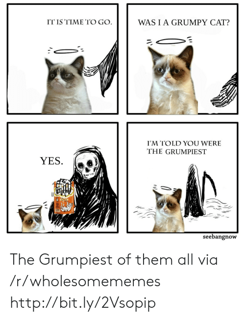 Grumpy Cat: ITIS TIME TO GO  WASIA GRUMPY CAT?  I'M TOLD YOU WERE  THE GRUMPIEST  YES.  seebangnow The Grumpiest of them all via /r/wholesomememes http://bit.ly/2Vsopip