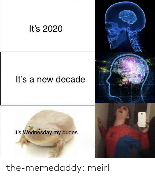 Tumblr, Blog, and Wednesday: It's 2020  It's a new decade  It's Wednesday my dudes the-memedaddy:  meirl