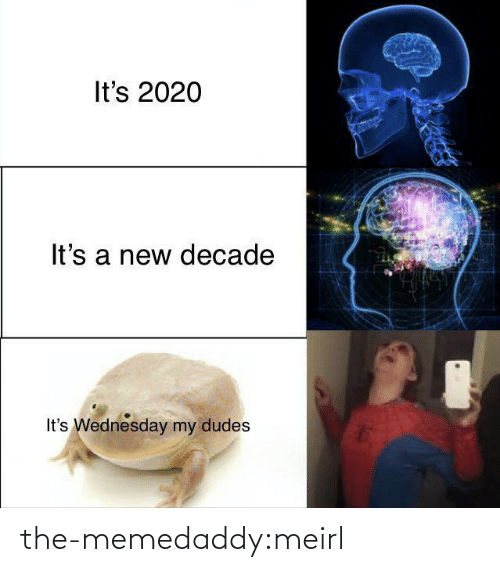 Wednesday: It's 2020  It's a new decade  It's Wednesday my dudes the-memedaddy:meirl