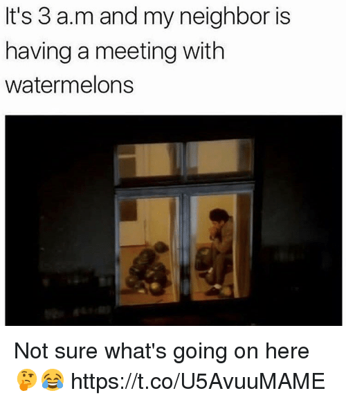 A&m, Whats, and Sure: It's 3 a.m and my neighbor is  having a meeting with  watermelons Not sure what's going on here 🤔😂 https://t.co/U5AvuuMAME