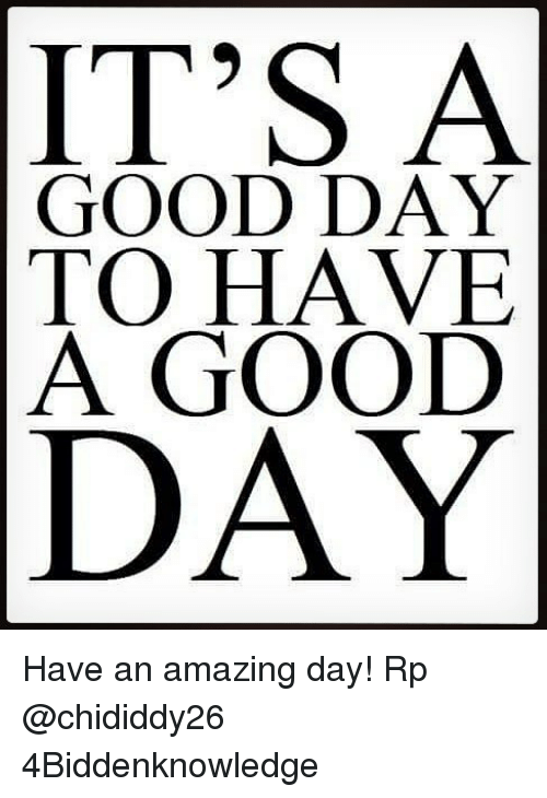 Memes, Good, and Amazing: IT'S A  GOOD DAY  TO HAVE  A GOOD  DAY Have an amazing day! Rp @chididdy26 4Biddenknowledge