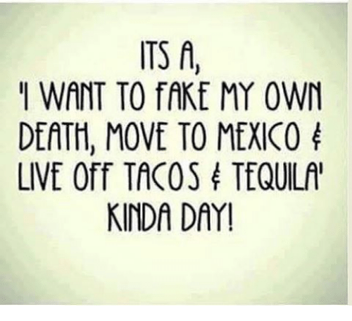 Fake, Memes, and Death: ITS A  I WANT TO fAKE MY OWN  DEATH MOVE TO MEXICO  LIVE Off TACOS TEQUILA'  KINDA DAY!