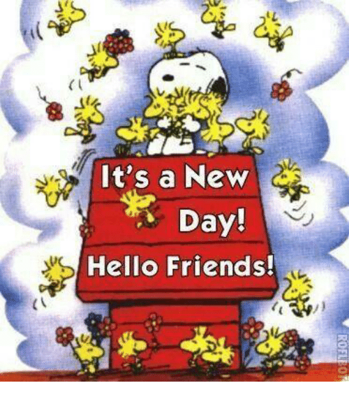 https://pics.onsizzle.com/its-a-new-day-hello-friends-6143135.png Hello New Friend