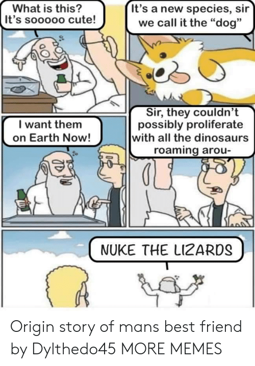 "nuke: It's a new species, sir  we call it the ""dog""  What is this?  It's sooooo cute!  Sir, they couldn't  possibly proliferate  with all the dinosaurs  roaming arou  I want them  on Earth Now!  NUKE THE LIZARDS Origin story of mans best friend by Dylthedo45 MORE MEMES"