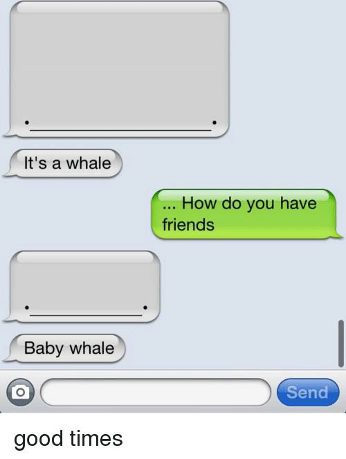 baby whale: It's a whale  Baby whale  How do you have  friends  Send good times