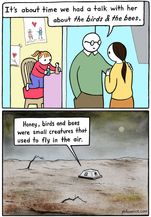 Birds, Time, and The Birds: It's about time we had a talk with her  about the birds & the bees.  Honey, birds and bees  were small creatures that  used to fly in the air.  pbfcomics.com