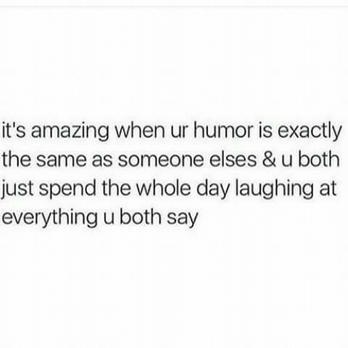 whole day: it's amazing when ur humor is exactly  the same as someone elses & u both  just spend the whole day laughing at  everything u both say