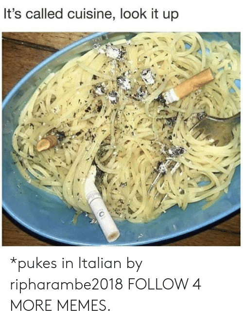 pukes: It's called cuisine, look it up *pukes in Italian by ripharambe2018 FOLLOW 4 MORE MEMES.