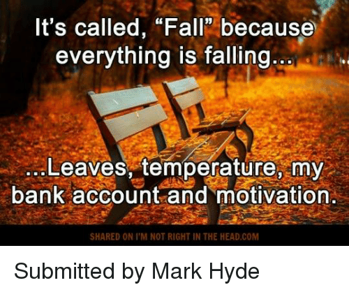 "Fall: It's called, ""Fall because  everything is falling  Leaves, temperature, my  bank account and motivation.  SHARED ON I M NOT RIGHT IN THE HEAD,COM Submitted by Mark Hyde"