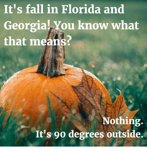 Fall In Florida: It's fall in Florida and  Georgia! You know what  that means?  Nothing  It's 90 degrees outside.