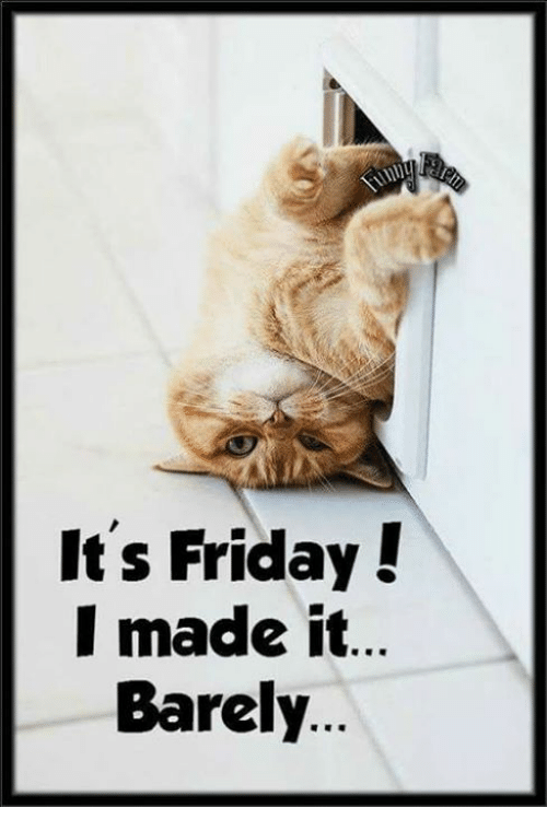 It Friday: It's Friday!  I made it  Barely.