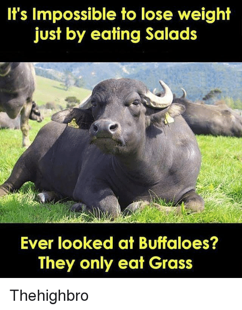 eating green salad to lose weight
