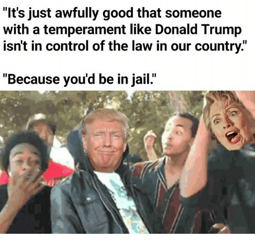 """Trump: """"It's just awfully good that someone  with a temperament like Donald Trump  isn't in control of the law in our country.""""  """"Because you'd be in jail."""""""