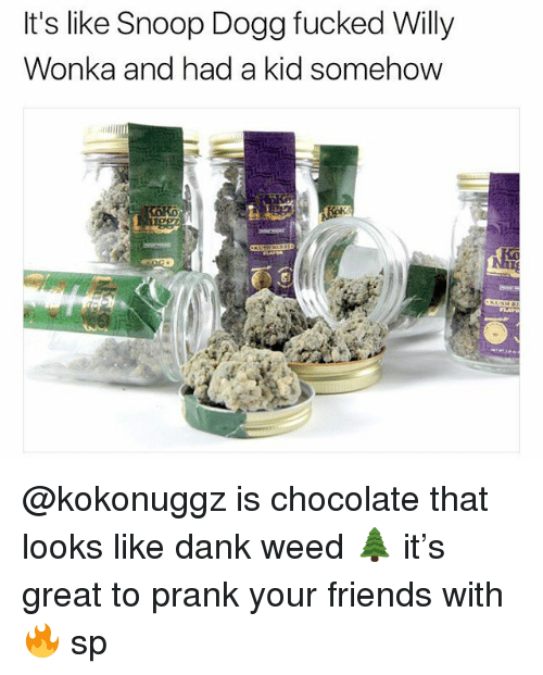 dank weed: It's like Snoop Dogg fucked Willy  Wonka and had a kid somehow @kokonuggz is chocolate that looks like dank weed 🌲 it's great to prank your friends with 🔥 sp