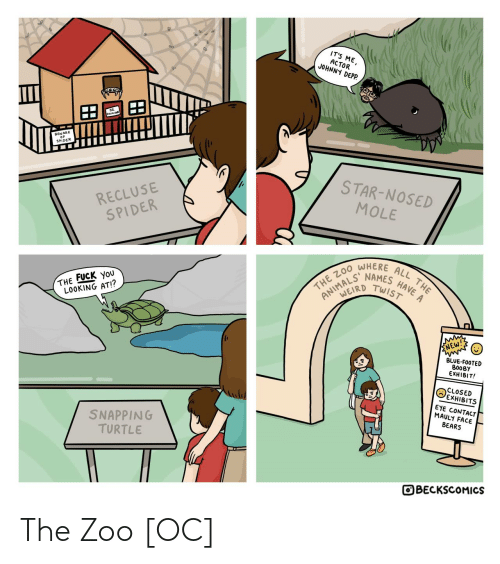 Bears: IT'S ME,  ACTOR  JOHNNY DEPP.  BEWARE  SPIDER  STAR-NOSED  RECLUSE  SPIDER  MOLE  WHERE  HAVE A  NAMES  TWIST  ALL THE  THE ZO0  ANIMALD  THE FUCK YoU  LOOKING AT!?  ENEW!  BLUE-FOOTED  BOOBY  EXHIBIT!  CLOSED  EXHIBITS  EYE CONTACT  MAULY FACE  BEARS  SNAPPING  TURTLE  OBECKSCOMICS The Zoo [OC]