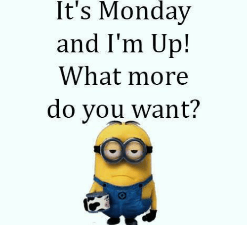 memes: It's Monday  and I'm Up!  What more  do you want?