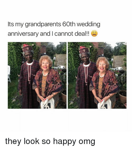 Omg, Happy, and Girl Memes: Its my grandparents 60th wedding  anniversary and I cannot deal!! they look so happy omg