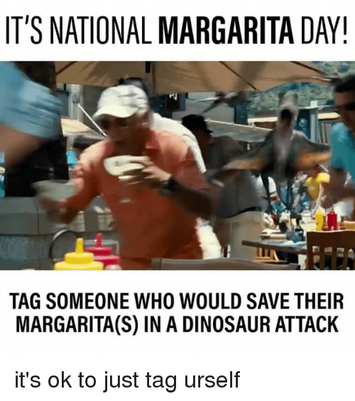 Relatable, Who, and Margarita: IT'S NATIONAL MARGARITA DAY!  TAG SOMEONE WHO WOULD SAVE THEIR  MARGARITA(S) IN A DINOSAUR ATTACK it's ok to just tag urself